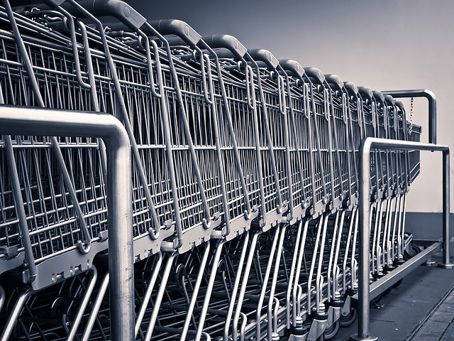 shopping cart - frugal shopper