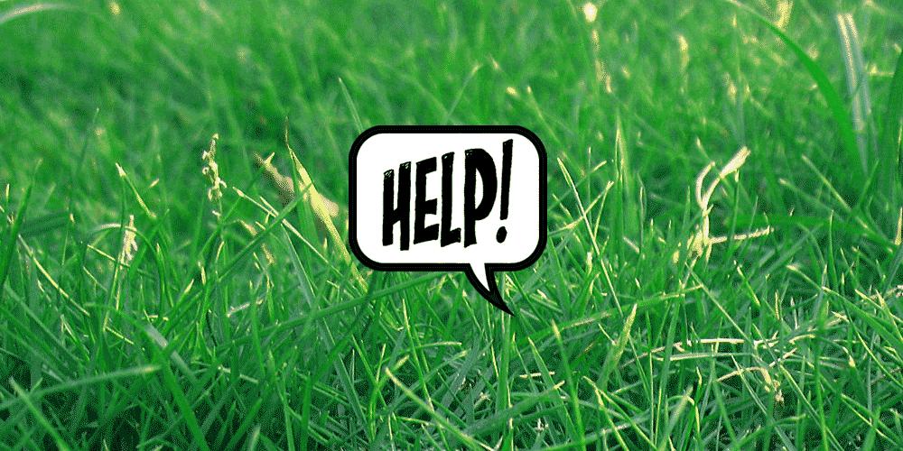 green grass help sign