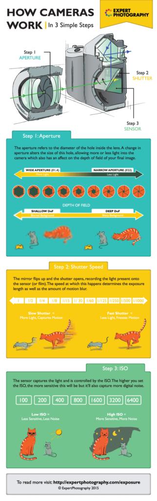 Cameras - Get a camera infographics
