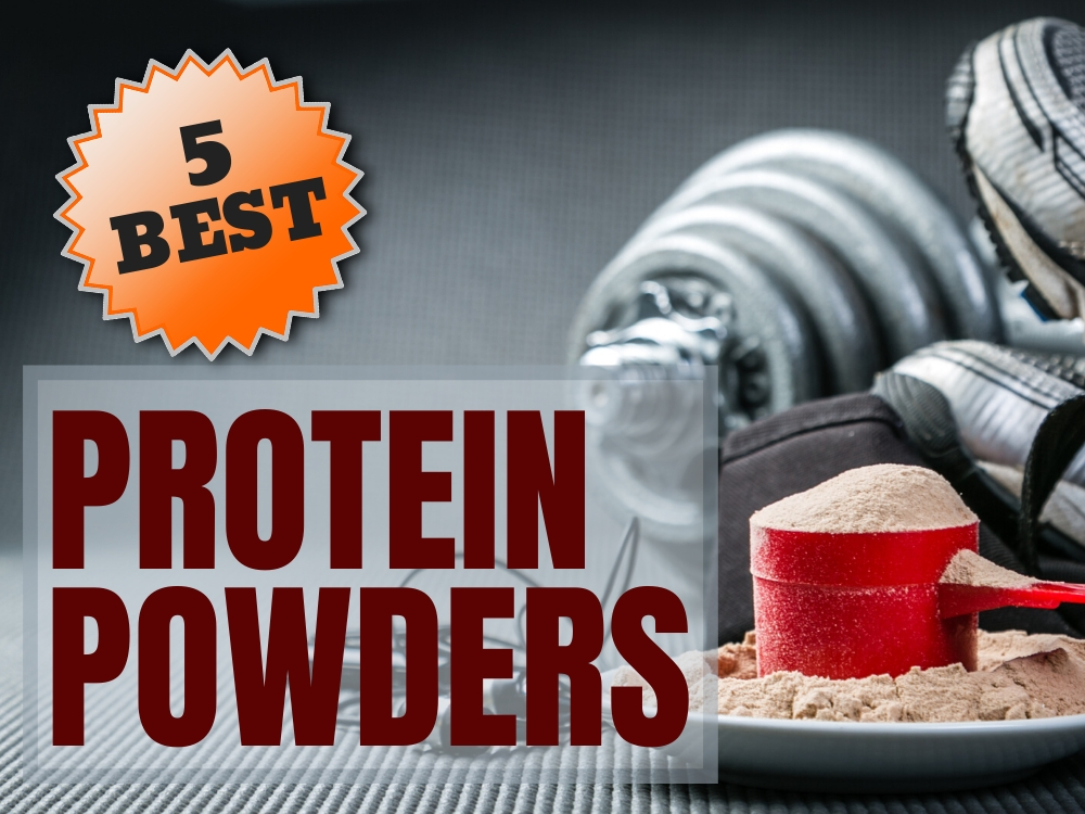 protein powder feature