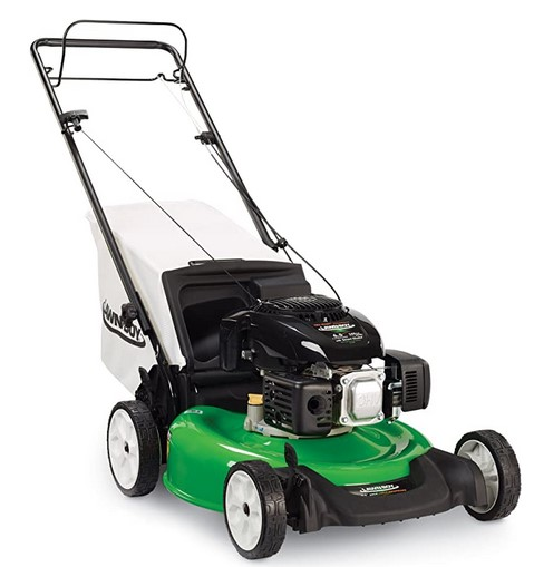 gas lawn mower 2