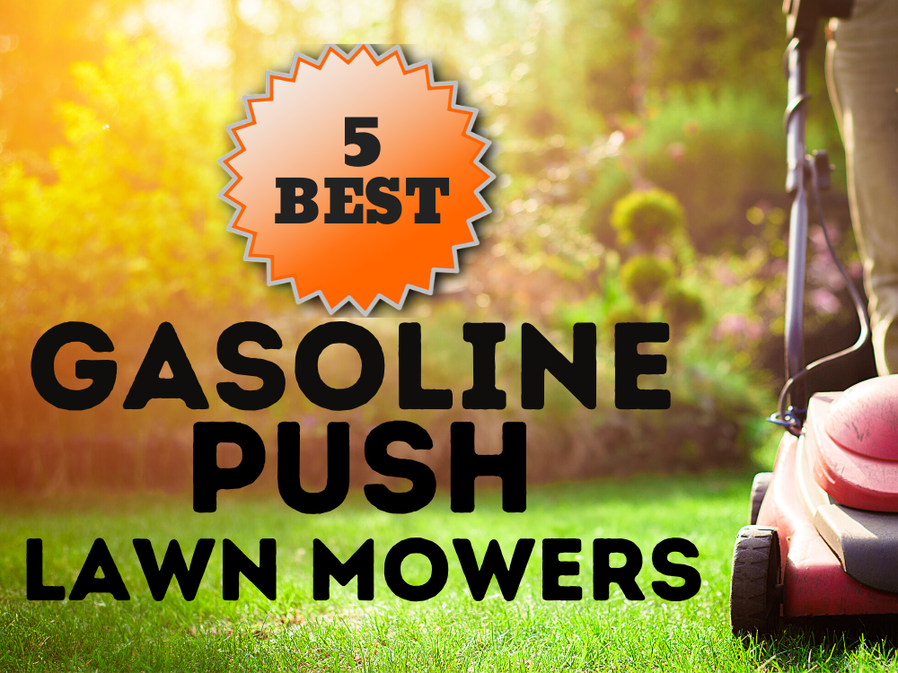 gas lawn mower featured